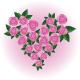 Pink  rose heart Stock Photography