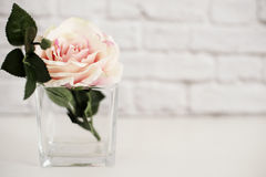 Pink Rose Mock Up. Styled Stock Photography. Floral Styled Wall Mock Up. Rose Flower Mockup, Valentine Mothers Day Card, Giftcard Stock Image