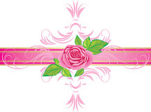 Pink rose with ornament on the decorative ribbon Royalty Free Stock Images