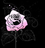 Pink rose painted paint Royalty Free Stock Photos