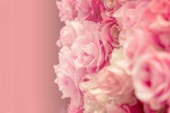 Pink rose pastel Royalty Free Stock Image