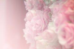 Pink rose pastel Stock Photography