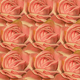 Pink Rose Pattern Stock Photo