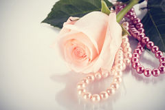Pink rose and pearl beads. Royalty Free Stock Photo