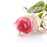 Pink rose and pearl beads. Stock Photos