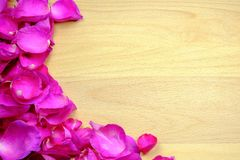 The pink rose petal is framed on a wooden board. Have space royalty free stock image