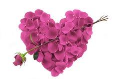 Pink Rose Petal Heart with arrow Stock Photography