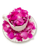 Pink rose petals in a beautiful tea cup Royalty Free Stock Photos