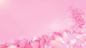 Pink Rose Petals flowing background