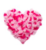 Pink rose petals heart Royalty Free Stock Photo