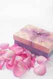Pink rose petals scattered around the box with bow Stock Images