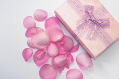 Pink rose petals scattered around the box with bow Royalty Free Stock Images