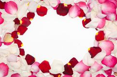 Pink. red and white rose petals. Valentine`s day background. Flat lay, top view royalty free stock photo