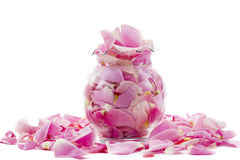 Pink Rose Petals in a Vase Stock Images
