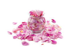 Pink Rose Petals in a Vase Stock Photo
