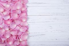 Pink rose petals on the white wooden background with copy space Royalty Free Stock Photography