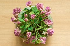 Pink rose pots on  wood background royalty free stock photo