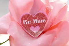 Pink Rose. A pretty pink rose with a sparkling heart that reads Be Mine stock photos