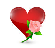 Pink rose and red heart illustration design Royalty Free Stock Photos