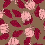 Pink rose and red leaf pattern. Hand drawn vector illustration. royalty free illustration