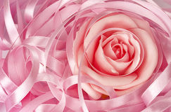 Pink rose and ribbon Royalty Free Stock Photos