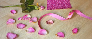 Pink rose and ribbon stock photography