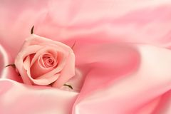 Pink Rose Satin. A detail of a pink rose on pink satin fabric Royalty Free Stock Image