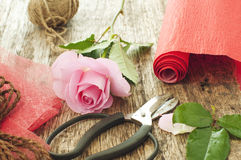 Pink rose and scissors Royalty Free Stock Photos