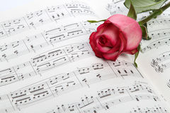 Pink rose on sheet music. Closeup of a fresh, pink rosebud lying on an open piece of sheet music stock photography