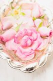 Pink rose in silver bowl with water, close up Stock Photo