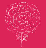 Pink rose sketch Royalty Free Stock Photos