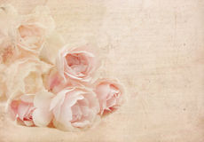 Pink rose .Textured conceptual image. Royalty Free Stock Photography