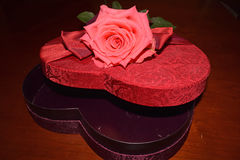Pink rose on top of open heart shaped red box. With red bow Royalty Free Stock Images