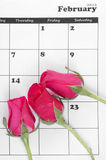 Pink rose on valentine calendar Royalty Free Stock Photo