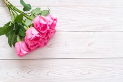 pink rose in vase on wood background stock images