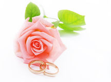 Pink Rose & vigselringar royaltyfri foto