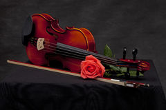 Pink rose on violin Royalty Free Stock Image