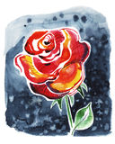 Pink rose. Watercolor rose flower. Can be used as greeting card, invitation card for wedding, birthday and other holiday and summer background. Watercolor clip Stock Illustration
