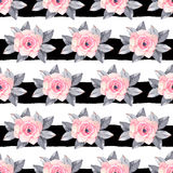 Pink rose watercolor illustration seamless pattern Stock Images