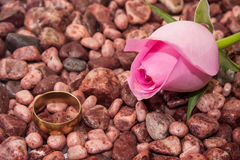Pink rose with wedding ring on the little red stones Stock Image