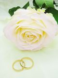 Pink rose and wedding rings. On satin beige background Stock Images