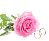 Pink rose and wedding rings. Close-up pink rose and wedding rings, isolated on white Royalty Free Stock Photos