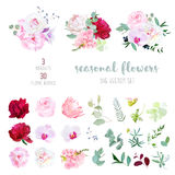 Pink Rose, White And Burgundy Red Peony, Protea, Violet Orchid, Hydrangea, Campanula Flowers Royalty Free Stock Photo