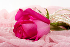 Pink rose and white pearls Royalty Free Stock Image