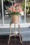 Pink rose Stock Photos