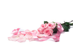 Pink Roses Royalty Free Stock Photos