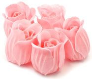 Pink roses. Isolated on white Stock Photos
