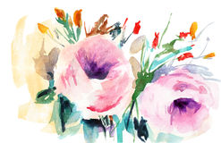 Pink Roses. With leaves, watercolor illustration Royalty Free Stock Images