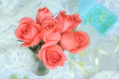 Pink Roses. * soft diffuser on the camera len Royalty Free Stock Image