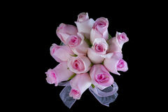 Pink Roses From Above Royalty Free Stock Image